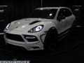 HendoSmoke - 2014 LA Auto Show-997